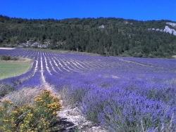 Les Hauts de Drôme