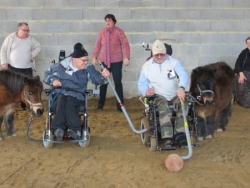 sortie cheval organisée par Elora, stagiaire