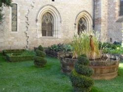 Jardin Cathédrale Cahors 22