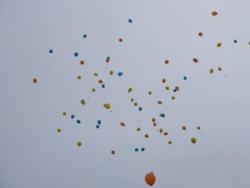 2013 l'APF fête ses 80 ans !
