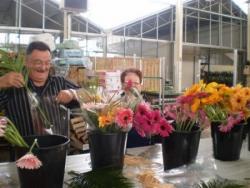 Préparation des fleurs 3