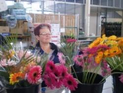 Préparation des fleurs 4