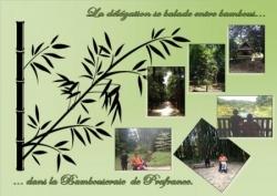 La Bambouseraie de Prafrance. Juin 2014