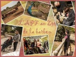 zoo de la barben 2012