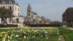 Séjour châteaux de la Loire - Mars 2011