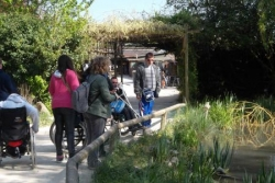 Parc cigognes (3).JPG