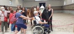 Pause estivale au Festival Equestria 2021 à Tarbes.