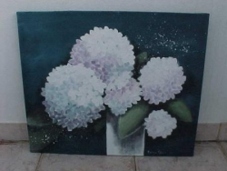 Les hortensias blanches
