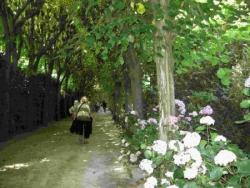 Jardin musée Bossuet