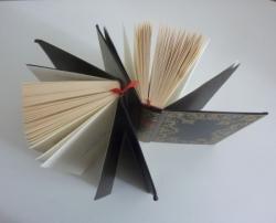 Atelier 2 livres_Nico