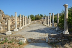 La basilique civile