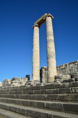 Le Temple d'Apollon à Didymes
