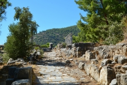 Le Temple d'Athéna Polias à Priène