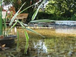 bassin de baignade 3