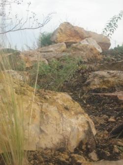 réaménagement d'une allée ambiance rocaille