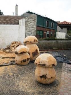 Le champignon est partout...