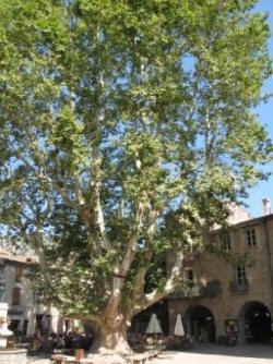 Place de la Lberté au coeur du village