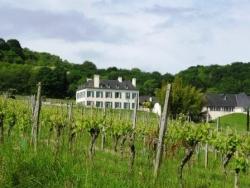 Domaine d'Artiguelouve