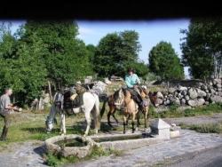 Alsaciens à Rieutort d'Aubrac