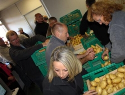 300 kg de patates