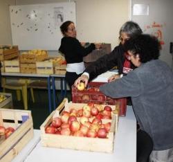 Une tonne de fruits et de légumes