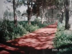 Yaoundé Koutaba