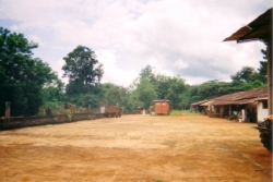 Koutaba