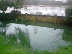 Flooding January 2008