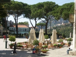 Umbrella pines and umbrellas, Ravello