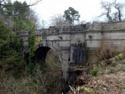 T1 : Le pont des chiens suicidaires