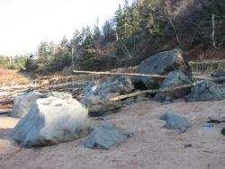 Le naufragé silencieux de Sandy Cove