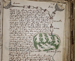 L'indéchiffrable manuscrit de Voynich