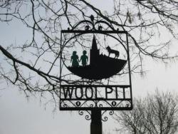 T1 : Les enfants verts de Woolpit