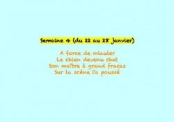 Semaine 04