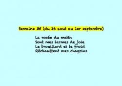 Semaine 35