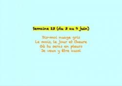 Semaine 23