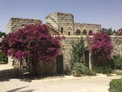 Dans le jardin du monastère