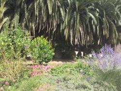 Les beaux jardins du monastère