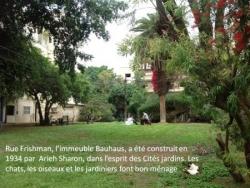 Rue Frishman