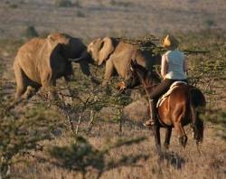 Kenya - déc. 2005