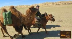 """Repérage rando à cheval """"Désert et Steppes de Mongolie"""""""