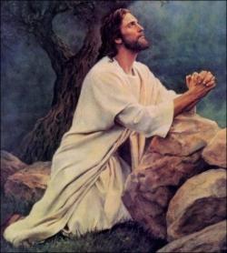Gethsemani 4