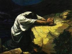 Gethsemani 5