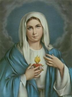 Coeur Immaculé de Marie 1