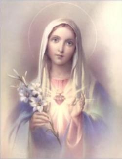 Coeur Immaculé de Marie 2
