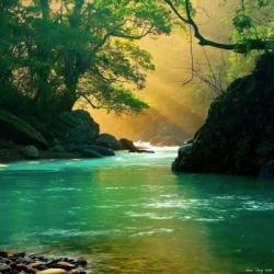 Rivière au soleil