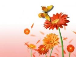 Fleurs et papillon 1