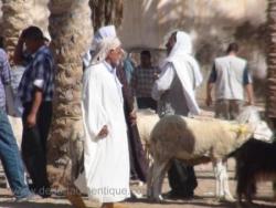 Marché bedouin