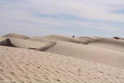 Les vaguelettes du désert