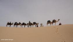Notre groupe sur la dune